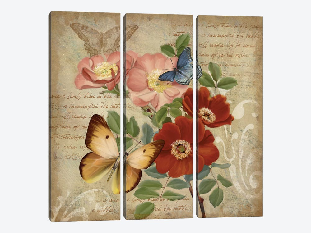 Butterfly Botanical I by Conrad Knutsen 3-piece Art Print