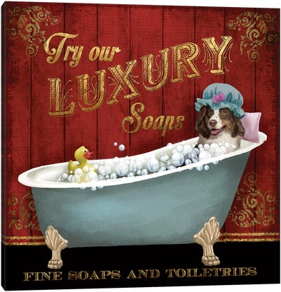 Luxury Soaps Canvas Art Print