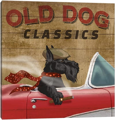 Old Dog Classics Canvas Art Print