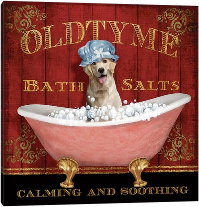 Old Tyme Bath Canvas Art Print