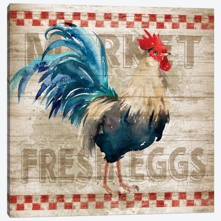 Morning Eggs Canvas Print #KNU37} by Conrad Knutsen Canvas Art