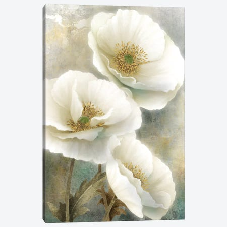 Soft Spring I Canvas Print #KNU54} by Conrad Knutsen Canvas Art