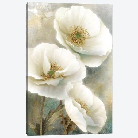 Soft Spring I Canvas Print #KNU54} by Conrad Knutsen Canvas Art