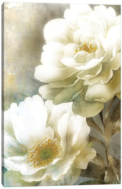 Soft Spring II Canvas Art Print