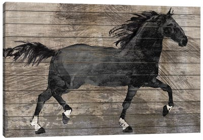 Barnwood Horse Canvas Art Print