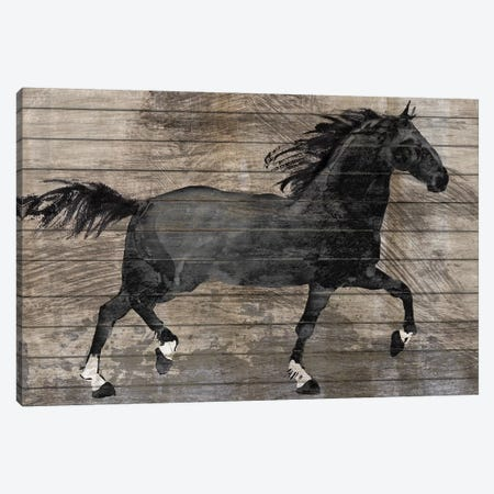 Barnwood Horse Canvas Print #KNU59} by Conrad Knutsen Canvas Print