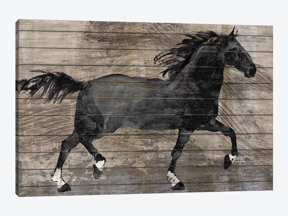 Barnwood Horse by Conrad Knutsen 1-piece Canvas Wall Art