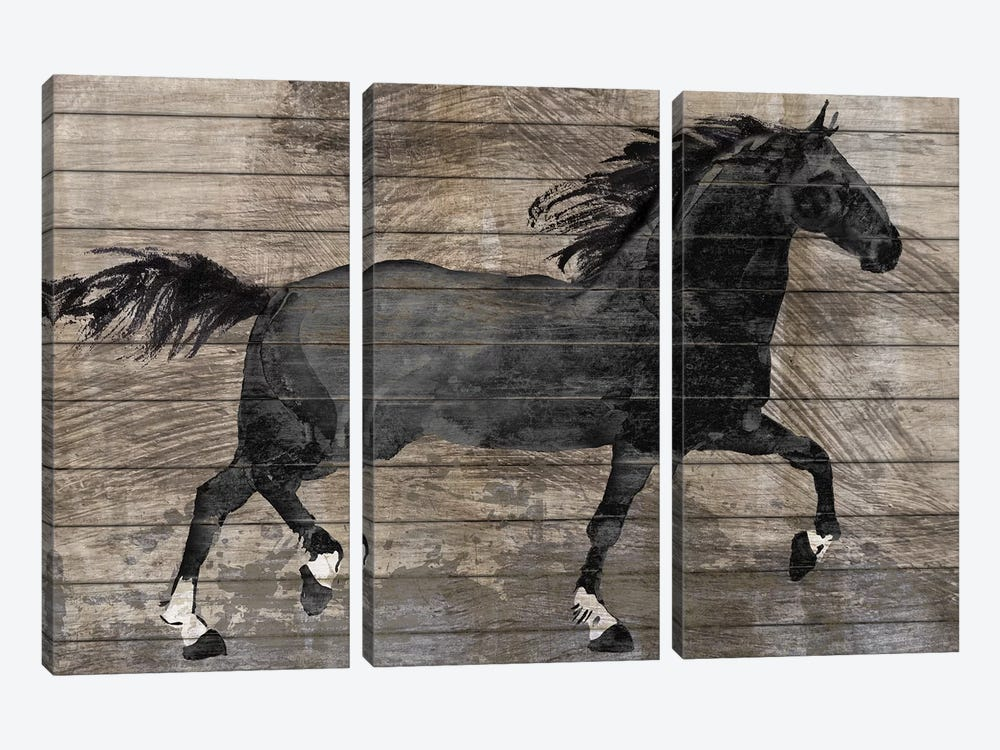 Barnwood Horse by Conrad Knutsen 3-piece Canvas Wall Art