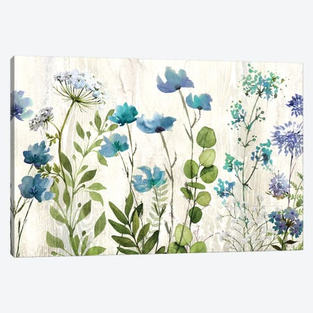 Blue Meadow Canvas Print #KNU68} by Conrad Knutsen Canvas Artwork