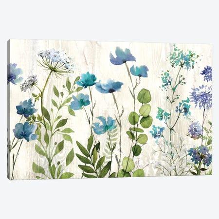 Blue Meadow Canvas Print #KNU68} by Conrad Knutsen Canvas Artwork