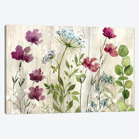 Meadow Flowers I Canvas Print #KNU71} by Conrad Knutsen Canvas Art Print