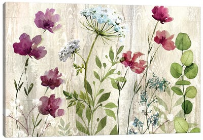 Meadow Flowers I Canvas Art Print