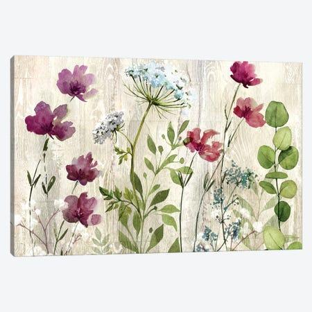 Meadow Flowers I Canvas Print #KNU71} by Conrad Knutsen Canvas Art Print