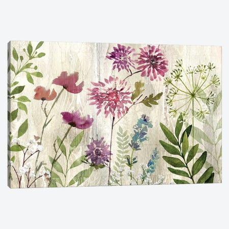 Meadow Flowers II Canvas Print #KNU72} by Conrad Knutsen Canvas Art Print