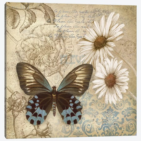 Butterfly Garden I Canvas Print #KNU85} by Conrad Knutsen Canvas Print