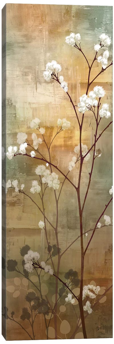 Misty Woods I Canvas Art Print