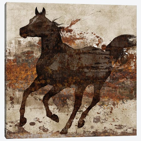 Running Free II Canvas Print #KNU98} by Conrad Knutsen Canvas Art Print