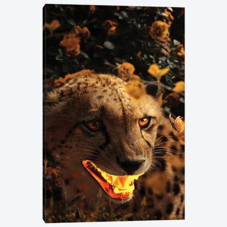 Gold Gepard Canvas Print #KNV10} by Milos Karanovic Canvas Art
