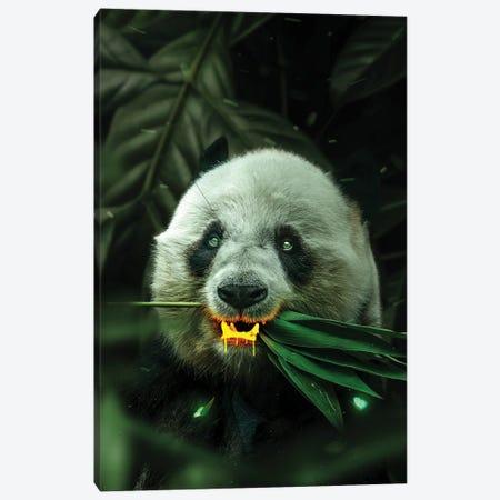 Gold Panda Canvas Print #KNV14} by Milos Karanovic Canvas Print