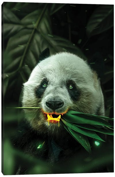Gold Panda Canvas Art Print