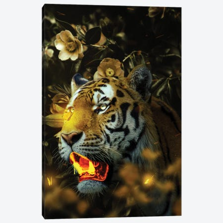 Gold Tiger Canvas Print #KNV15} by Milos Karanovic Canvas Print