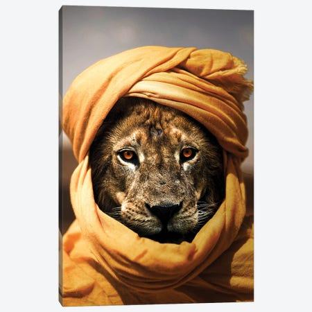 Lion Canvas Print #KNV20} by Milos Karanovic Canvas Print