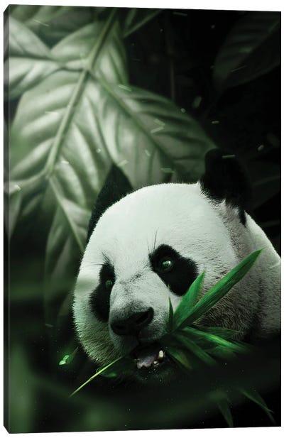 Panda Canvas Art Print