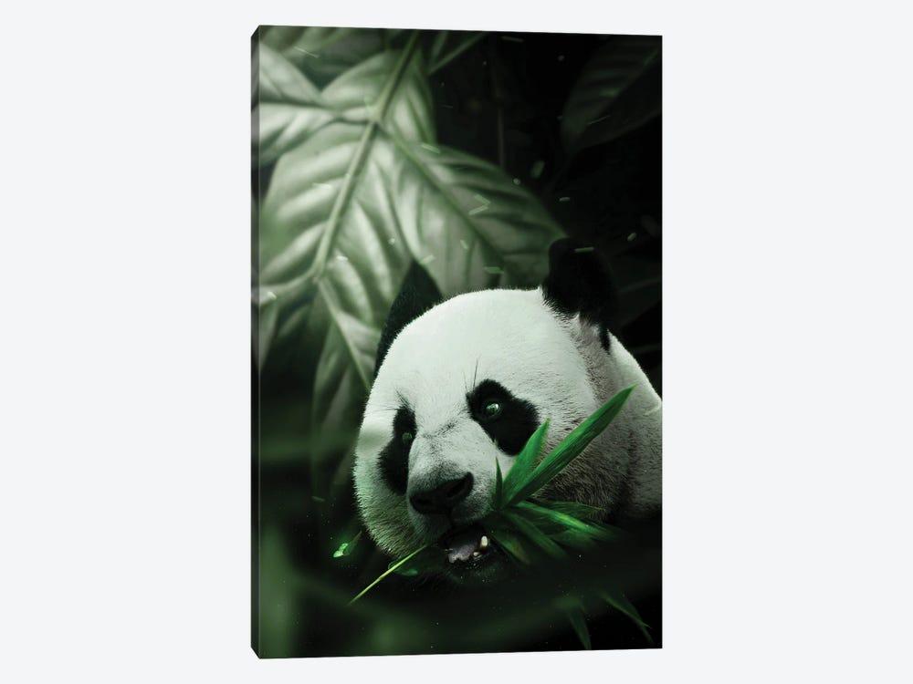 Panda by Milos Karanovic 1-piece Canvas Art