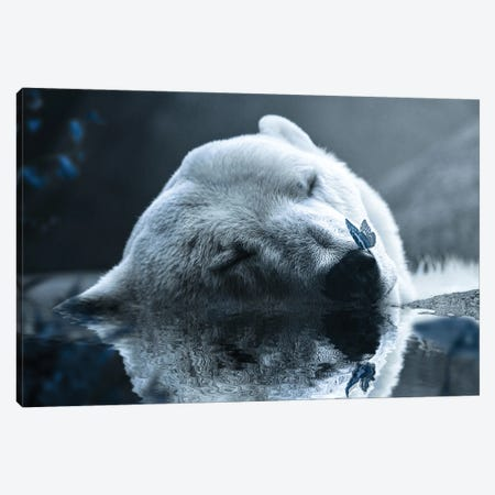 Polar Bear Canvas Print #KNV26} by Milos Karanovic Canvas Artwork