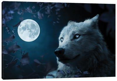 Wolf In Beutiful Night Canvas Art Print