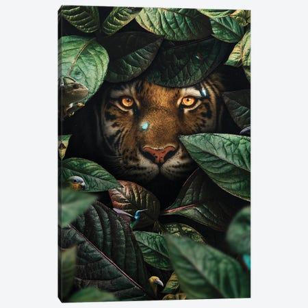 Tiger In Leaves Canvas Print #KNV66} by Milos Karanovic Canvas Art
