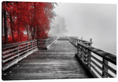 Fall Walkway Canvas Art Print