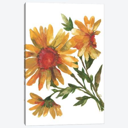 Provence Sunflowers Canvas Print #KPA193} by Kim Parker Art Print