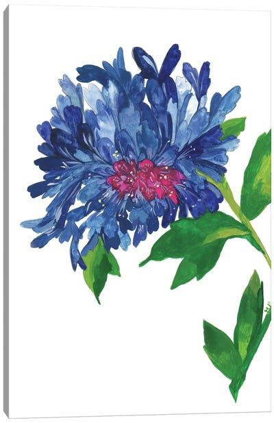 Blue Zinnia Canvas Art Print