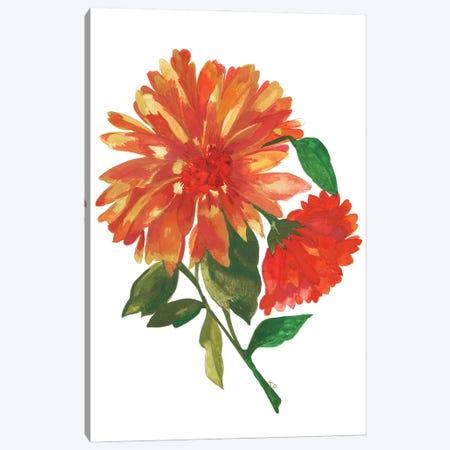 Wild Golden Dahlia Canvas Print #KPA204} by Kim Parker Canvas Artwork