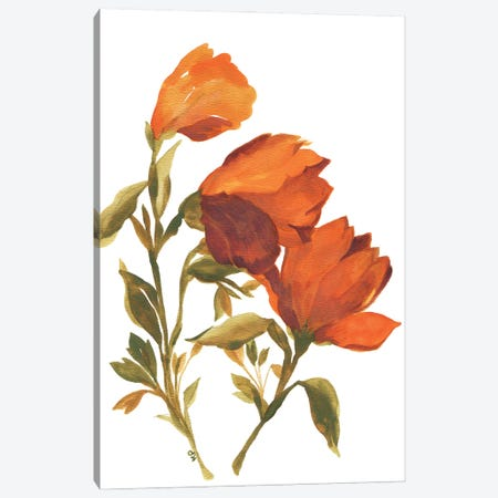 Amber Tulips Canvas Print #KPA205} by Kim Parker Canvas Wall Art