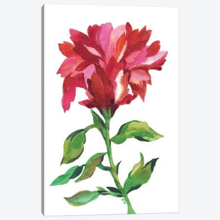 Cranberry Iris Canvas Print #KPA209} by Kim Parker Canvas Art Print