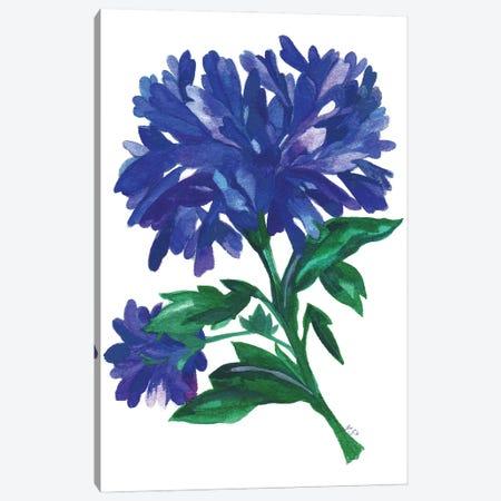 Royal Blue Zinnias Canvas Print #KPA224} by Kim Parker Canvas Art