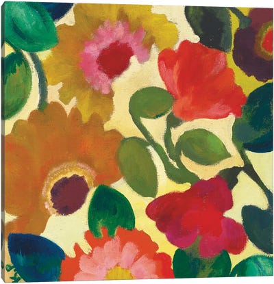 Ranunculus I Canvas Art Print