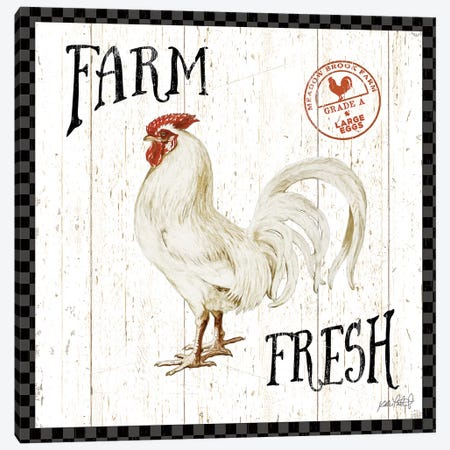 Free Range Fresh III Checker Border Canvas Print #KPE16} by Katie Pertiet Canvas Artwork