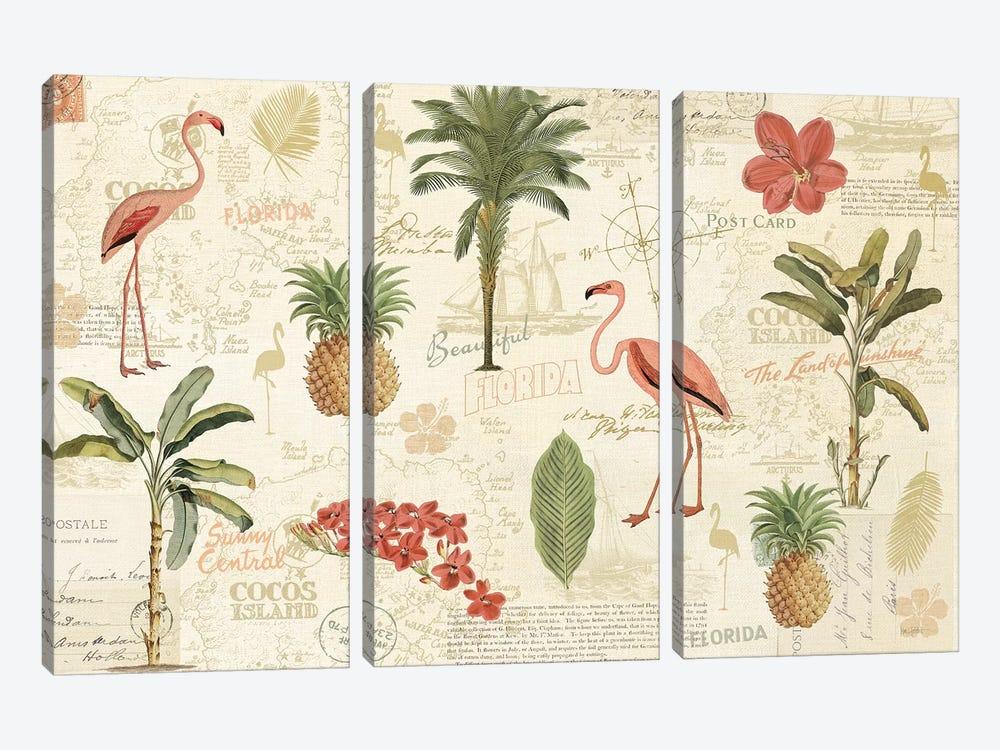 Floridian VI by Katie Pertiet 3-piece Canvas Print