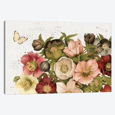 Vintage Petals I Canvas Print #KPE19} by Katie Pertiet Art Print