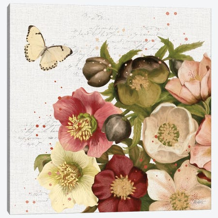 Vintage Petals II Canvas Print #KPE20} by Katie Pertiet Canvas Wall Art