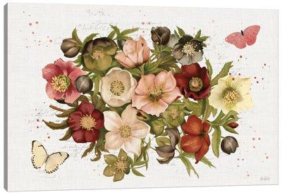 Vintage Petals IV Canvas Art Print