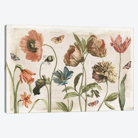 Antiquarian Blooms I Canvas Print #KPE60} by Katie Pertiet Canvas Art