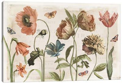 Antiquarian Blooms I Canvas Art Print