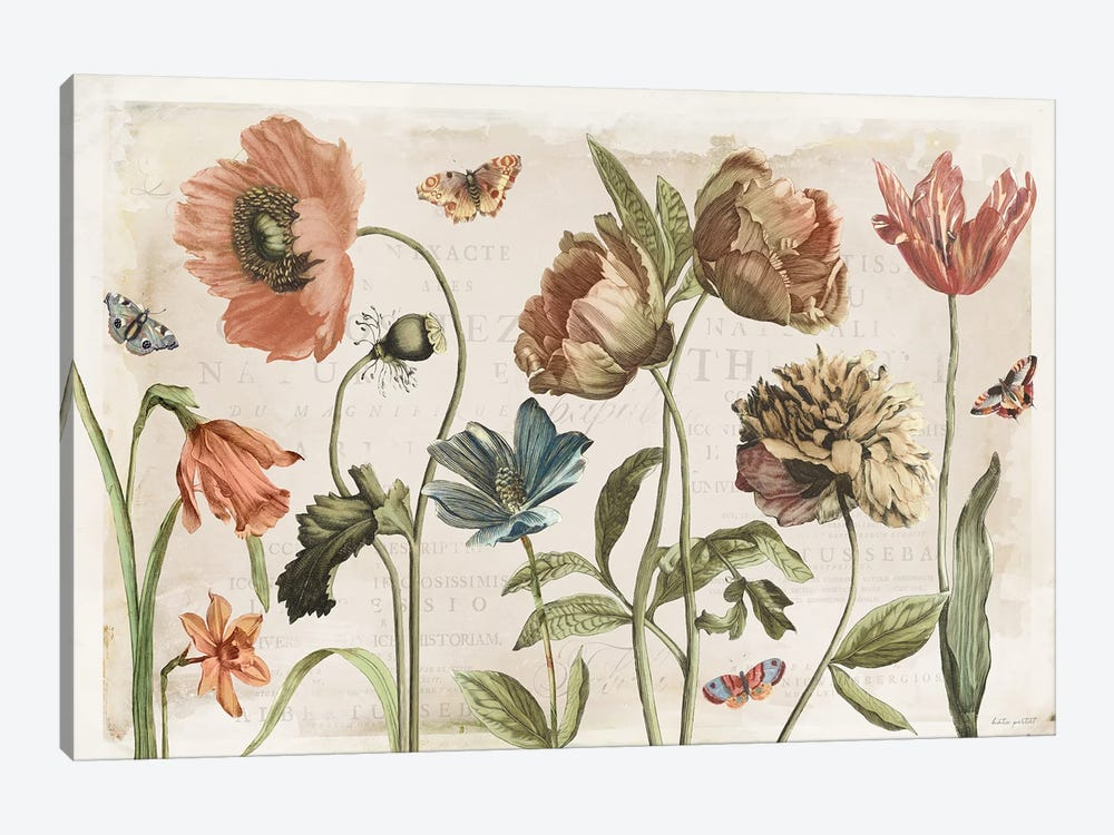 Antiquarian Blooms I by Katie Pertiet 1-piece Canvas Artwork