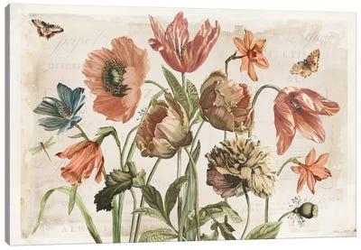 Antiquarian Blooms II Canvas Art Print