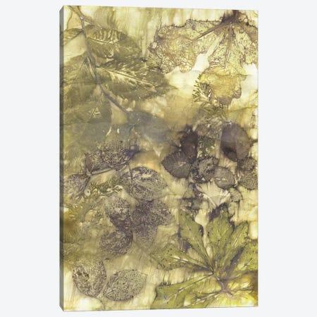 Eco Print I Canvas Print #KPH1} by Kathryn Phillips Canvas Art