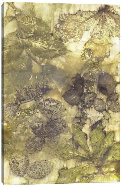 Eco Print I Canvas Art Print